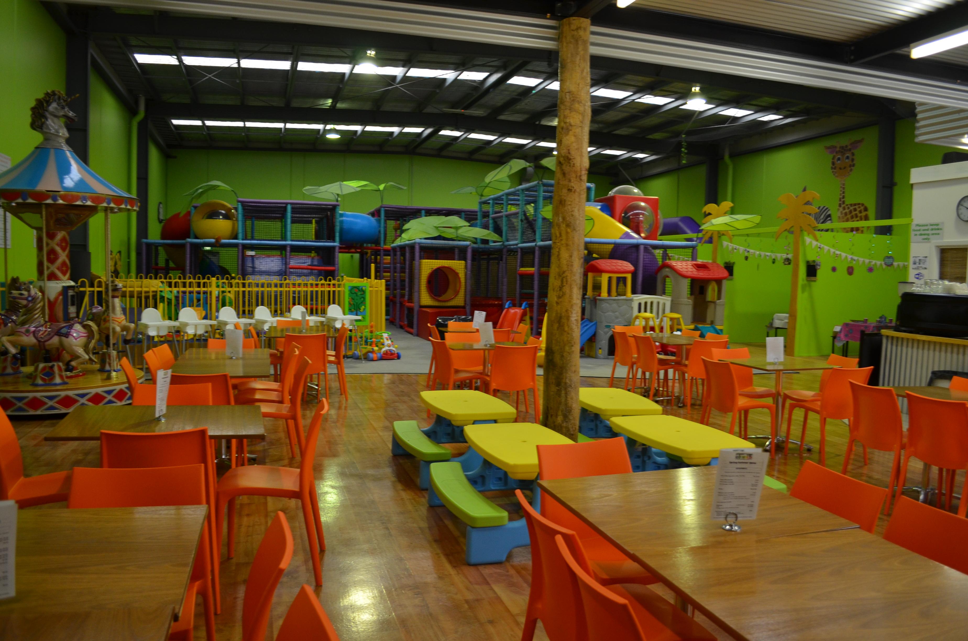 Go Wild Indoor Party & Play