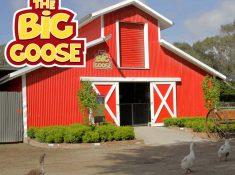 The Big Goose