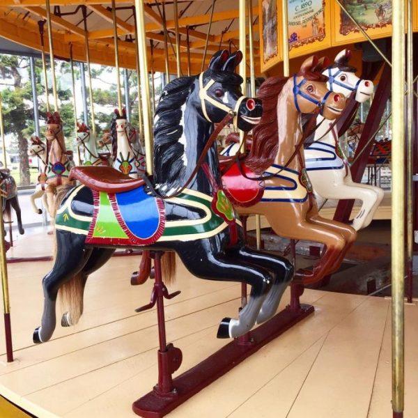 The Carousel Geelong