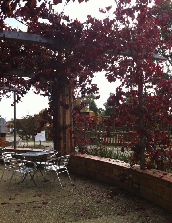Phoenix Park cafe