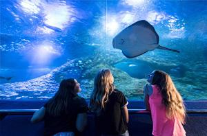 Perth Aquarium