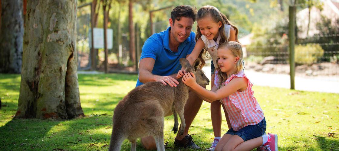 Paradise Country Aussie Farm