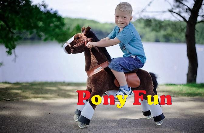 Pony Fun