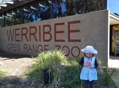 Werribee zoo discount